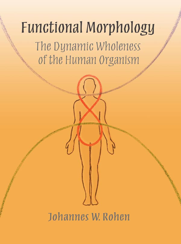 Image for <B>Functional Morphology </B><I> The Dynamic Wholeness of the Human Organism</I>
