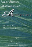Image for <B>Rudolf Steiner's Observations On Adolescence </B><I> The Third Phase of Human Development</I>