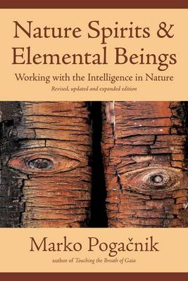 Image for <B>Nature Spirits and Elemental Beings </B><I> Working with the Intelligence in Nature</I>