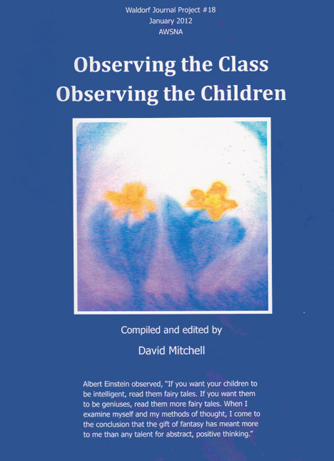 Image for <B>Observing the Class, Observing the Children </B><I> Waldorf journal Project #18</I>