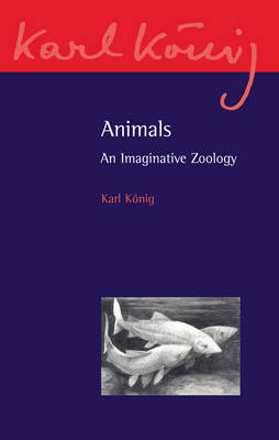 Image for <B>Animals </B><I> An Imaginative Zoology</I>