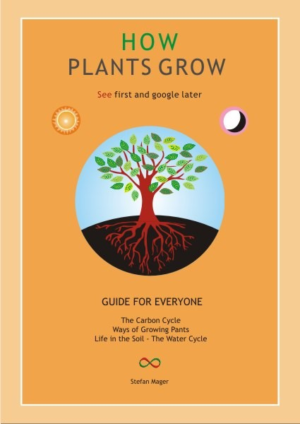 Image for <B>How Plants Grow </B><I> </I>
