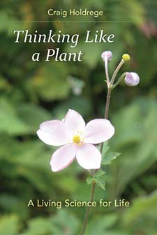 Image for <B>Thinking Like a Plant </B><I> A Living Science for Life</I>