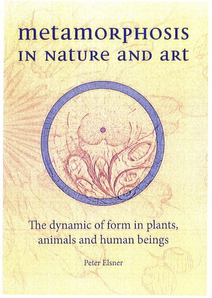 Image for <B>Metamorphosis in Nature and Art </B><I> The Dynamics of Form In Plants, Animals and Human Beings</I>