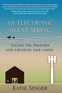 Image for <B>Electronic Silent Spring, An </B><I> Facing the Dangers and Creating Safe Limits</I>