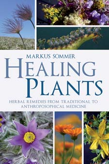 Image for <B>Healing Plants </B><I> Herbal Remedies from Traditional to Anthroposophical Medicine</I>