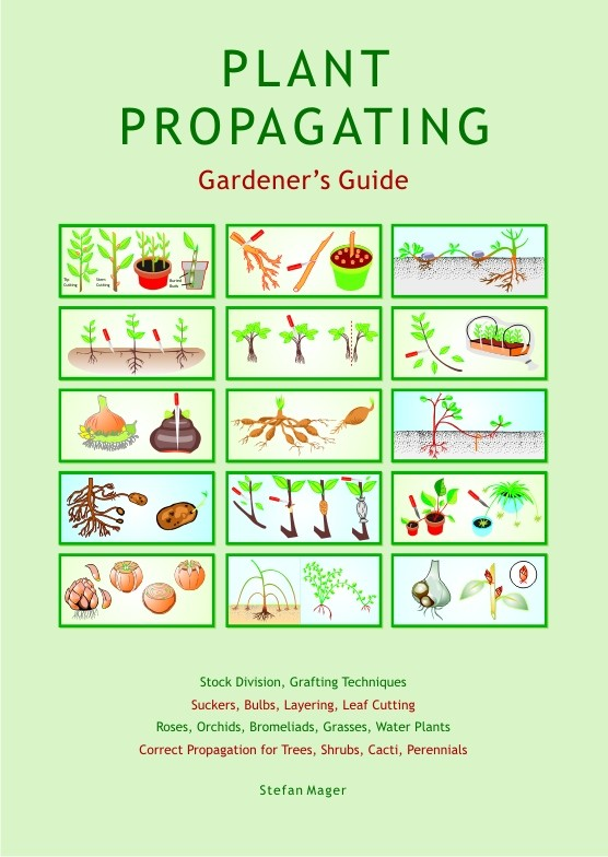 Image for <B>Plant Propagating Gardener's Guide </B><I> </I>