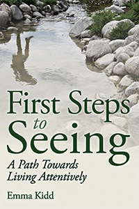 Image for <B>First Steps to Seeing </B><I> A Path towards Living Attentively</I>