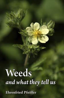 Image for <B>Weeds and What They Tell Us </B><I> </I>
