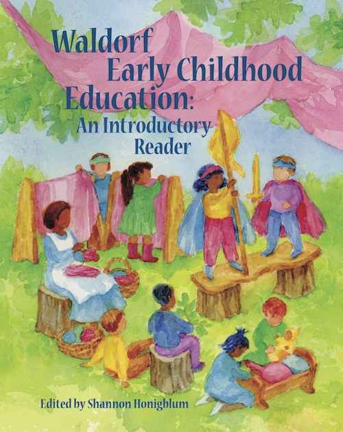 Image for <B>Waldorf Early Childhood Education </B><I> An Introductory Reader</I>