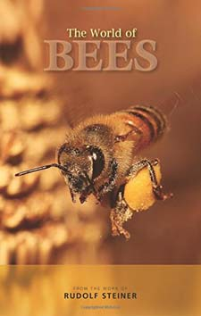 Image for <B>World of Bees </B><I> </I>