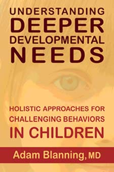 Image for <B>Understanding Deeper Developmental Needs </B><I> Holistic Approaches for Challenging Behaviors in Children</I>