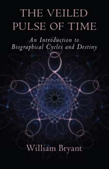 Image for <B>Veiled Pulse of Time </B><I> An Introduction to Biographical Cycles and Destiny</I>