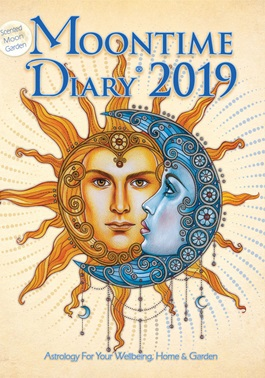 Image for <B>Moontime Diary 2019 </B><I> </I>