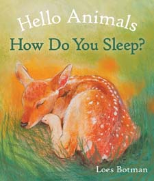 Image for <B>Hello Animals, How Do You Sleep? </B><I> </I>