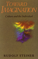Image for <B>Toward Imagination </B><I> Culture and the Individual</I>