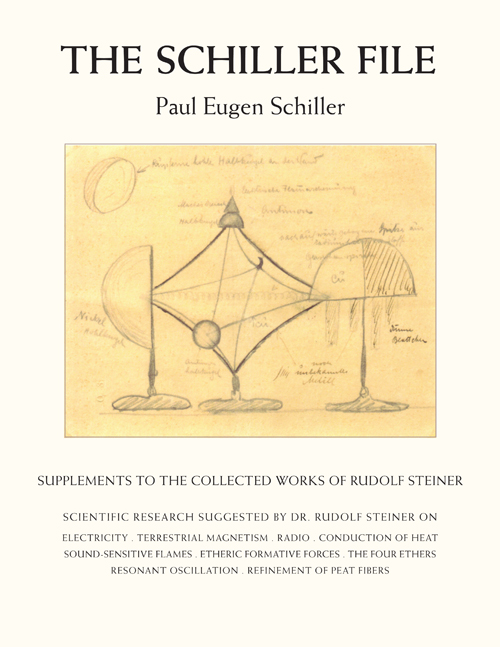 Image for <B>Schiller File </B><I> Supplements to the Collected Works of Rudolf Steiner</I>
