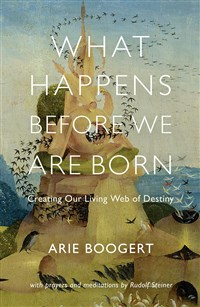 Image for <B>What Happens before We Are Born </B><I> Creating Our Living Web of Destiny</I>