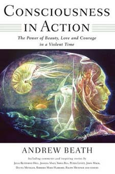 Image for <B>Consciousness in Action </B><I> The Power of Beauty, Love, and Courage in a Violent Time</I>