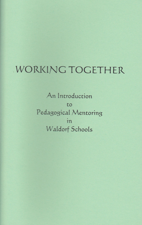 Image for <B>Working Together:  An Introduction to Pedagogical Mentoring </B><I> </I>