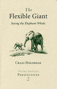 Image for <B>Flexible Giant, The </B><I> Seeing the Elephant Whole</I>