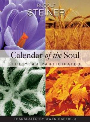 Image for <B>Calendar of the Soul </B><I> The Year Participated</I>