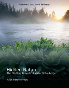 Image for <B>Hidden Nature </B><I> The Startling Insights of Viktor Schauberger</I>