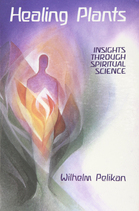 Image for <B>Healing Plants: Volume 1 </B><I> Insights through Spiritual Science</I>