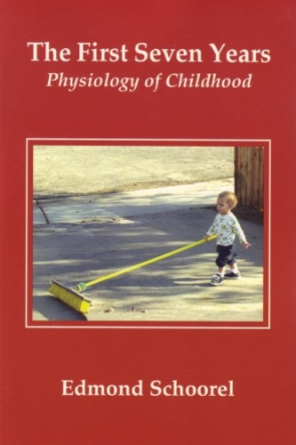 Image for <B>First Seven Years, The </B><I> Physiology of Childhood</I>
