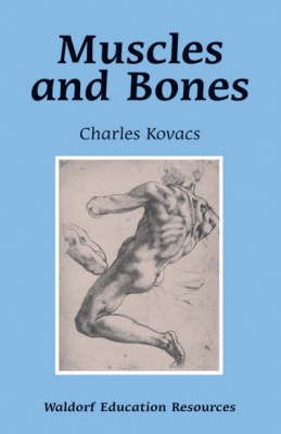 Image for <B>Muscles and Bones </B><I> </I>