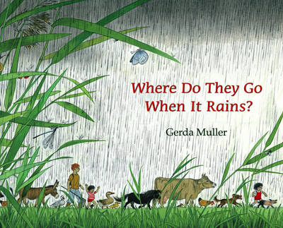 Image for <B>Where Do They Go When it Rains? </B><I> </I>